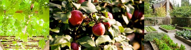 farm&garden-sept-archived