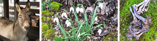 farm&garden-feb2015-archived