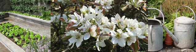 farm&garden-april2015-archived